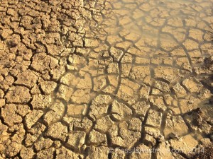 Modern Day Mud Cracks